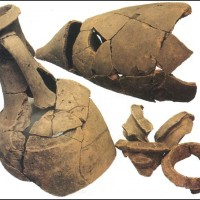 Anfore greco-italiche (III-II secolo d.C.) provenienti dall'Italia centro meridionale, riutilizzate dai Liguri Apuani per conservare liquidi e cibo. Museo Archeologico Versiliese \
