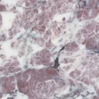 Marmo Fior di Pesco apuano, utilizzato come rivestimento delle pareti del vestibolo (E).